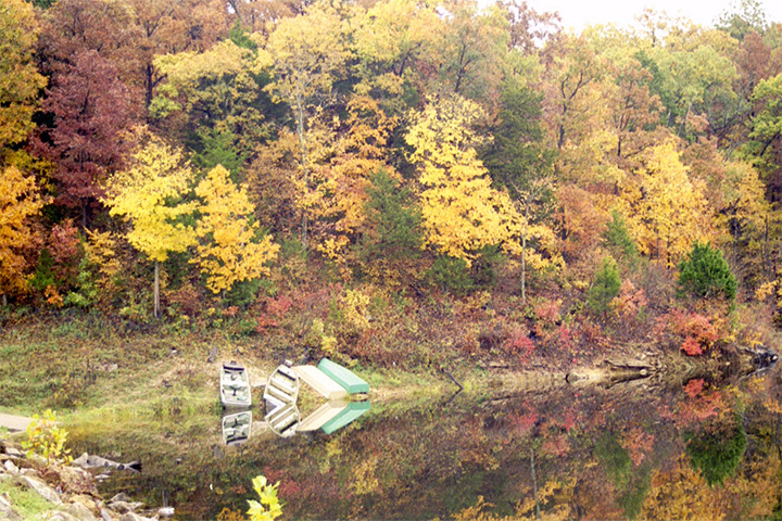 Fall at Wildwood